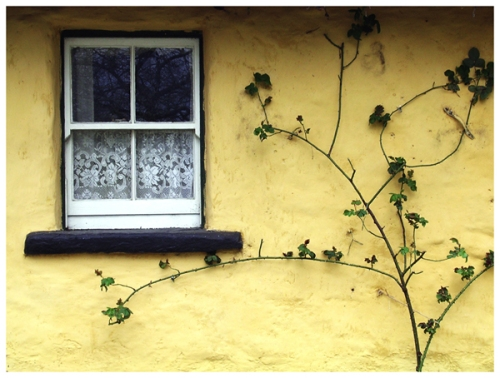 window_in_Ireland_by_ShoWatanabe