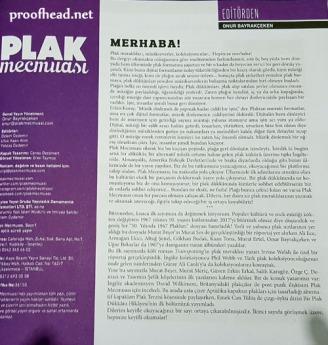 headplak006